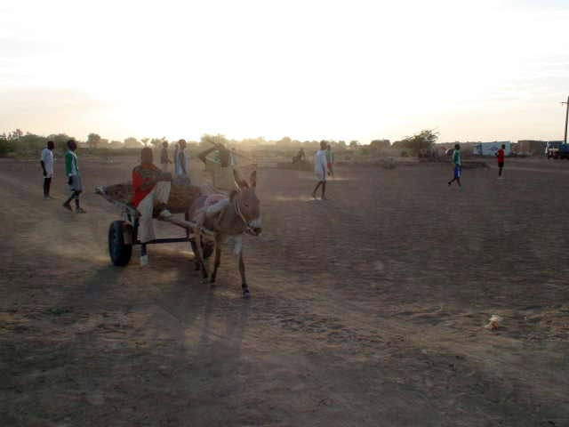 A donkey and cart cross the pitch