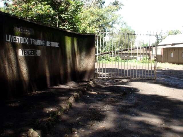 Entrance to the Livestock Institute in Tengeru